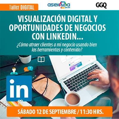 LinkedIn-mini